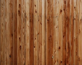 Pre-Treated Fence - Exclusive - Vinyl Photography Backdrop Floordrop Prop