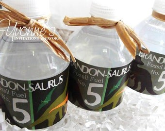 Dinosaur Water Bottle Wrappers - For Child-Boy Birthday