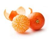 Mandarin Stud Earrings - Small Ear Studs - Earrings Post - Food Jewelry