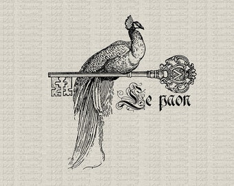 French Peacock Le Paon Crown Key Illustration Printable Image Fabric Transfer Clip Art Pillows Paper Crafts INSTANT DOWNLOAD