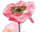 """SALE! Pink poppies - flowers & floral - Watercolour Art Drawing 8x10"""" Print (unframed)"""