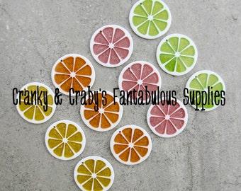 Set of 2 Resin Citrus Slice Pendants -  34mm x 34mm - Orange, Lime, Grapefruit, or Lemon