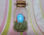 Mudkip egg in a bottle