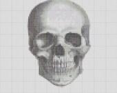 Small Human Skull Studies Cross Stitch 2 Patterns 12 Colors Antique Engraving PDF