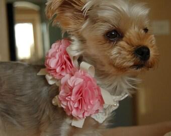 Beautiful bright pink dog collar,wedding dog collar.Birthday party dog collar.Yorkshire Terrier collar.pet fahsion,  Birthday gift for dog