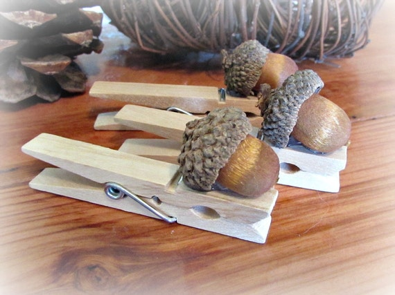 parties home decor and your table too acorn clothespins make adorable favors they are a lovely way to display place cards