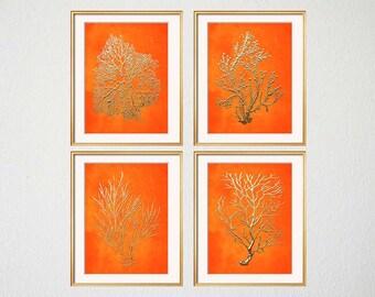 Orange Coral Print Set, Orange Sea Coral, Set of 4, Coral Wall Art, Coral Print, Beach House Gallery, Orange Coral Prints, Bedroom Art