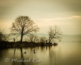 Chesapeake Winter