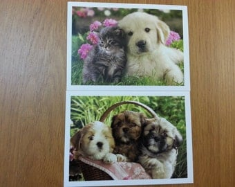 Lovely Dog Postcard- 6 Cards