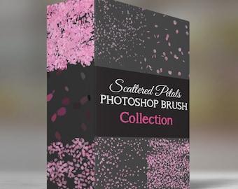 Scattered Petals - Photoshop Brush Set