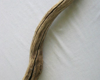 Driftwood - Perfect for Floral Accents or Other Rustic Home Decor Projects!