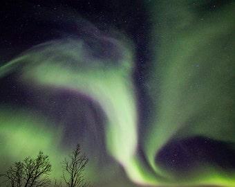 Northern lights, Landscape photography, Nature photography, Purple and green, Night photography,Norway, Nature
