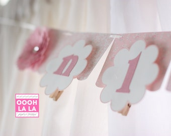 MADE TO ORDER Pretty in Pink First Year Photo Banner with Clips