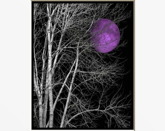 Black White Purple Wall Art Photography/ Tree Moon/ Bedroom Wall Art Home Decor Matted Picture