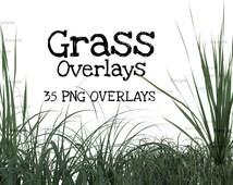 Grass PNG Overlays
