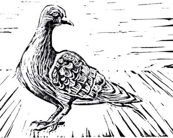 Proud Pigeon Linocut Print
