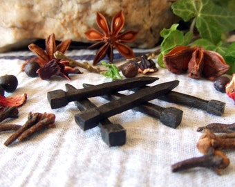 Set of 5 Black Wooden Coffin Nails handcrafted from 5000 year old Irish Bog Oak Pagan Wicca Spells Rituals