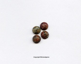 5mm Round Loose Leopard Skin Agate cabochons for Four