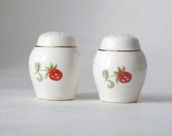 Vintage ceramic  Spice Serving Set - Salt and Pepper Shakers - Kitchen supply - Soviet era