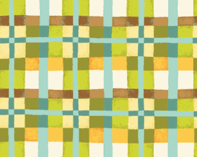 One Yard Mischief  - Happy Plaid in Green - Little Boy Fabric Line Designed by Nancy Halvorsen for Benartex (w891)