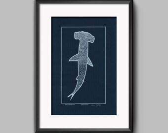 Sphyrna lewini. Original screenprint. Hammerhead shark.