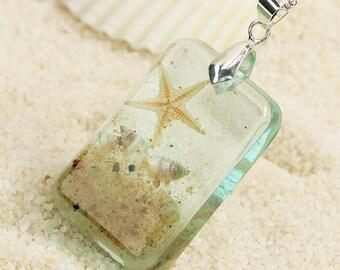 on the beach * mini Starfish & mussels k011 *.