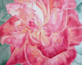 Taj Mahal Rose painting by Stephanie P Cox
