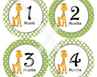 Printed Giraffe Baby Monthly Milestone Stickers, Giraffe Baby Monthly Stickers, Giraffe Baby Shower Gifts, Giraffe Baby Shower, LemonBells