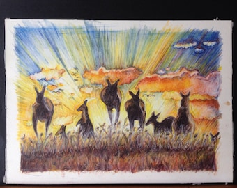 Quality prints available of my original watercolour drawing of Australian kangaroos feeding in the sunset