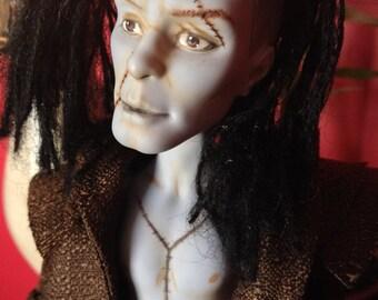 Dr.Travian Collection- FRANKENSTEIN'S MONSTER  (Monster High Custom Doll)
