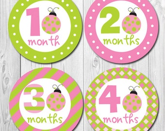 FREE GIFT Ladybug Monthly Stickers, Baby Stickers for Girls, Girl Month Stickers, Little Ladybug Baby, Shower Gift, Watch Me Grow