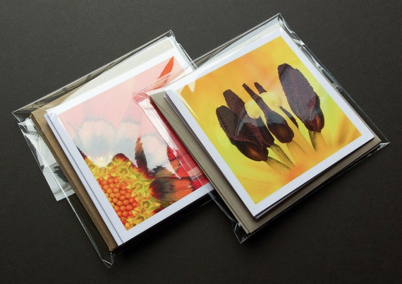 Floral Greeting Cards, Macro Photography, Cards With Envelopes, 3 Blank Cards, Paper Goods, Flower Photography