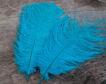 Teal Ostrich Feathers - Wedding Feathers - DIY Headband Feathers - 6 - 8 in.