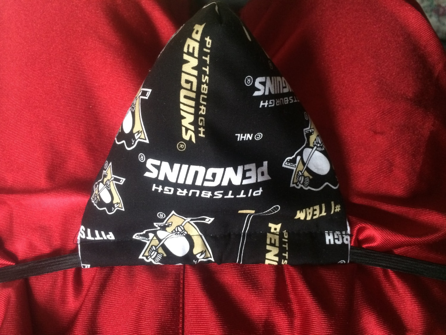 Pittsburgh Penguins Bedroom Decor Male Thong Etsy