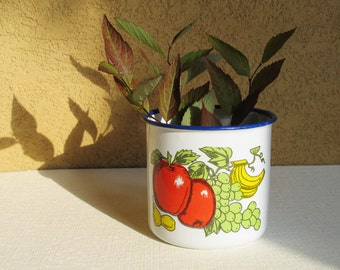 Fruit Enamel Cup. Vintage Enamel Mug with Fruits, White Rustic  Cup with Blue Border. Country Kitchen Decor. Made in USSR. Collectible
