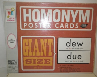25 Double Sided Homonym Poster Cards-perfect for 11x14 framing!