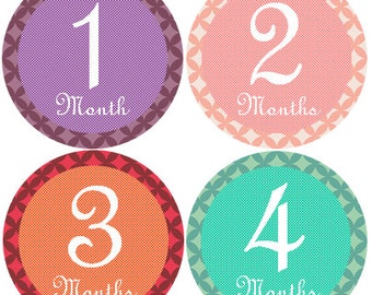 Milestone Stickers Girl, Milestone Stickers, Month Stickers, Baby Month Stickers, Baby Stickers #111