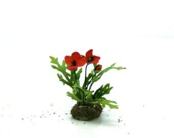 Dolls House Miniature Poppy Plant