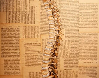 Original Medical Illustration using antique books - Uniting the Gap - The Spine - Print