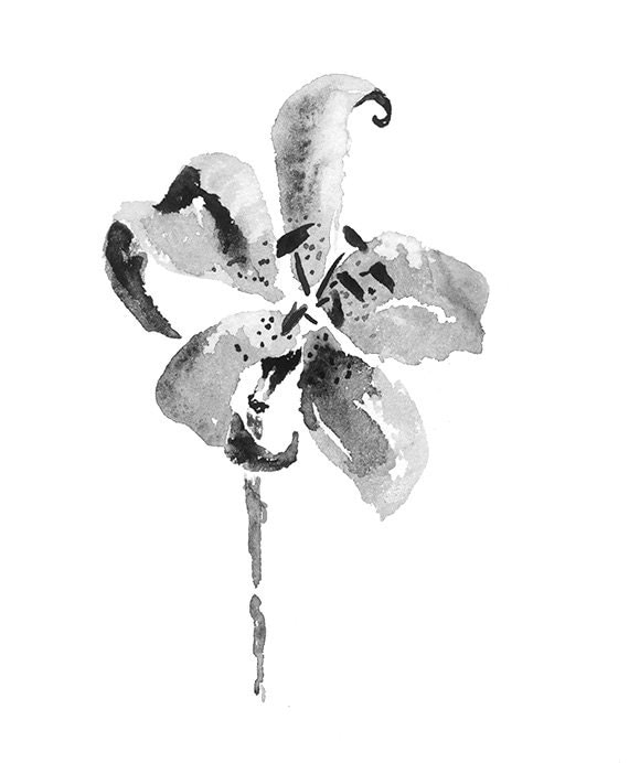 Black Flower Watercolor Art By Tae Lee: Lily Black And White Print From Original Watercolor