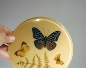 vintage lucite acrylic resin cast trivet hot plate with large butterflies, moths and dried fern nature scene