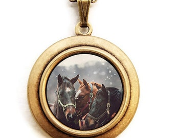 Nuzzle - Equine Horse Equestrian Photo Locket Necklace