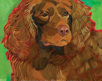 Boykin Spaniel No. 1 - magnets, coasters, blank notecards, art prints
