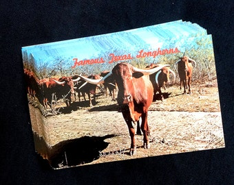 40 Texas Famous Longhorns Vintage Postcards - Travel Journal, Save the Date, Wedding Registry (Unused)