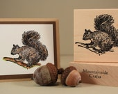 SQUIRREL - wood mounted rubber stamp (MCRS 20-02)