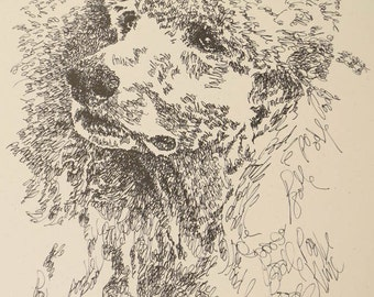 Standard Poodle - Artist Kline draws dog art using only words. Signed 11x17 Lithograph 206/500 - Artist Adds Your Dogs Name Into Art Free