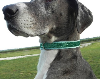 Aqua Metallic Sparkle Dog Collar