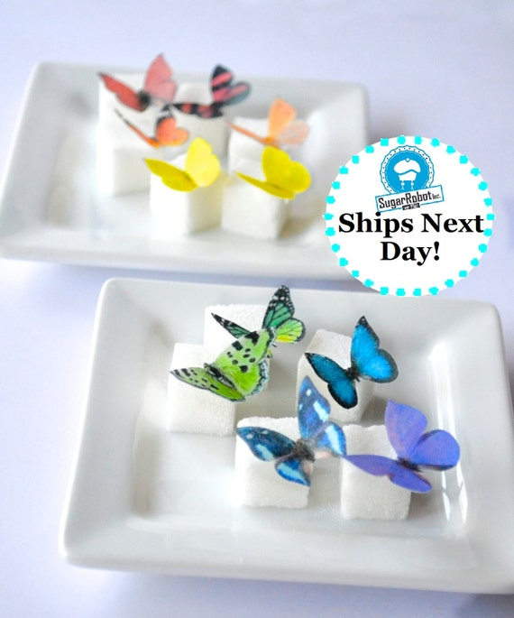 Wedding Cake Topper Itsy Bitsy Mini Edible Butterflies - Rainbow Assortment set of 48 - for Cake Decorating and Cupcake Toppers