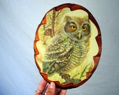 Kitschy Vintage Owl Wood Plaque Wall Hanging