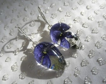 Royal Blue Verbena,Forget-Me-Nots Pressed Flower Glass Teardrop Leverback Earrings-Symbolizes Loyalty-Nature's Art-Gifts Under 25